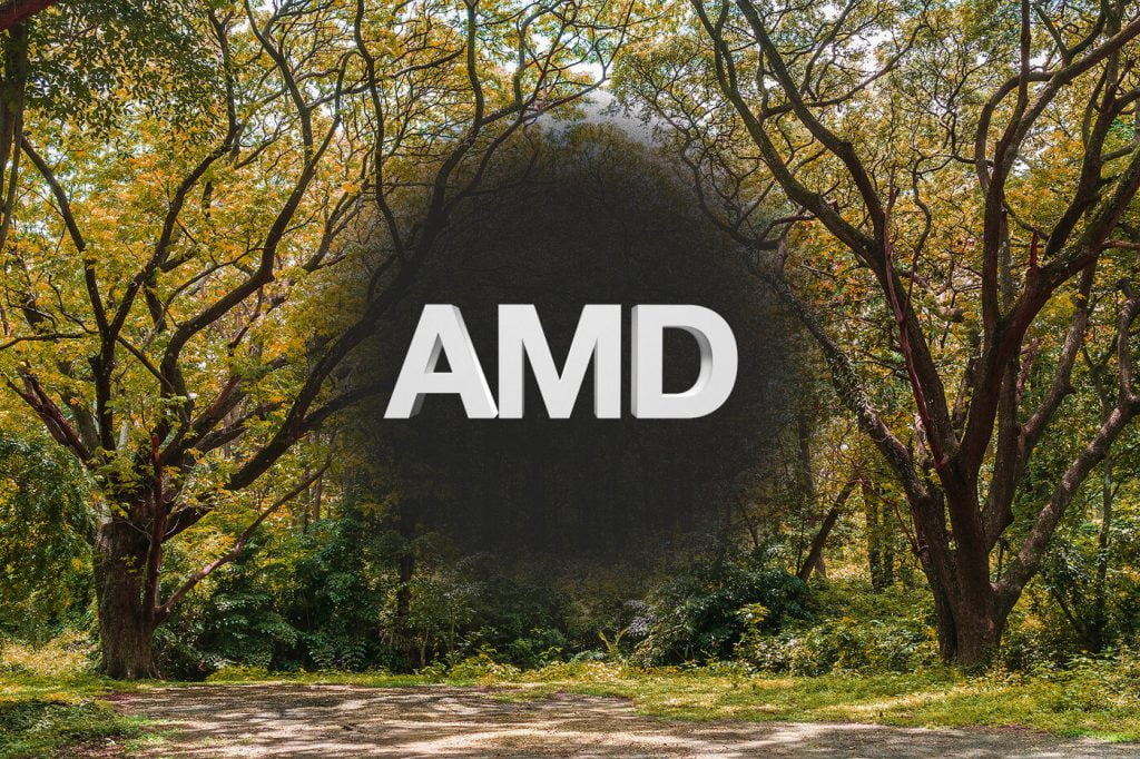 AMD Loss of Central Vision